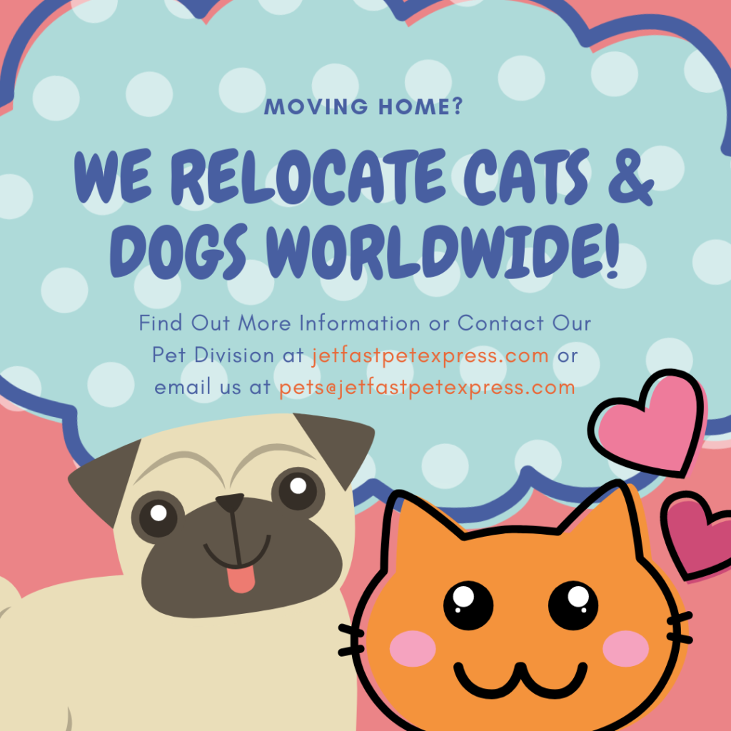 moving with Dogs & Cats